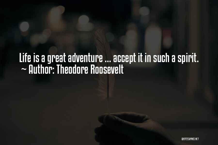Spirit Life Quotes By Theodore Roosevelt