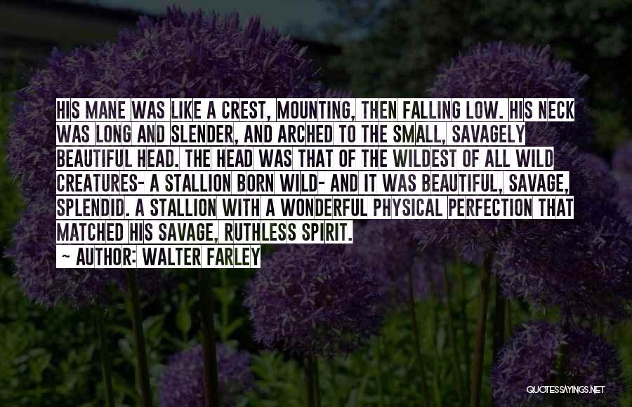 Spirit Stallion Quotes By Walter Farley