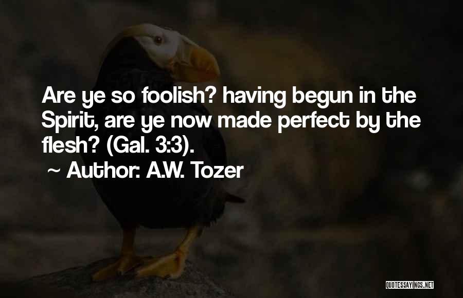 Spirit Vs Flesh Quotes By A.W. Tozer