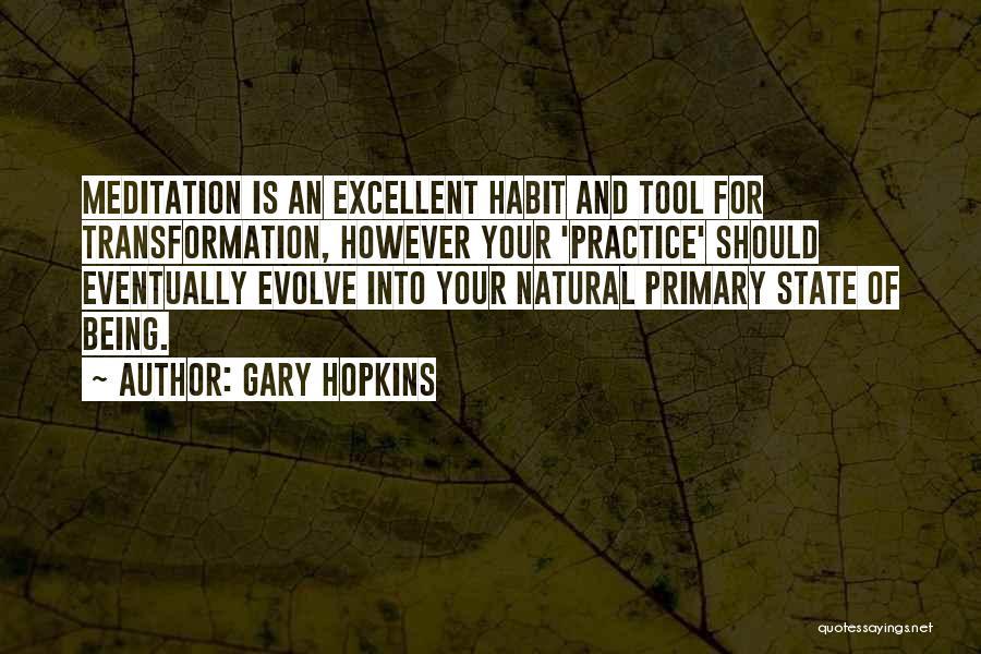 Spiritual Energy Healing Quotes By Gary Hopkins