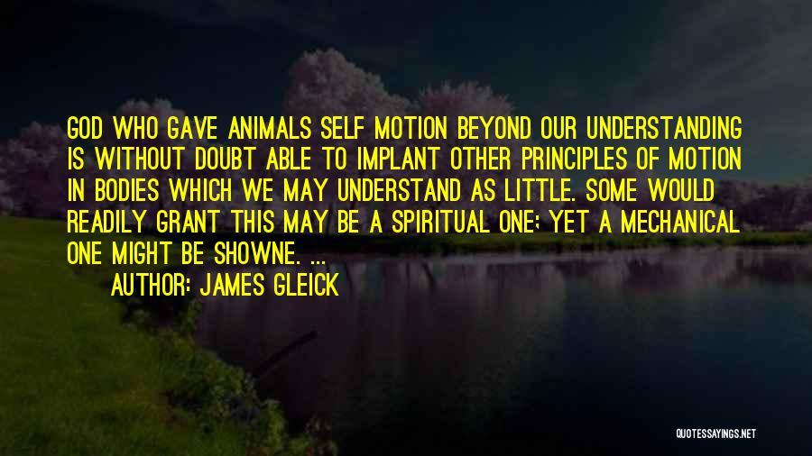 Spiritual Principles Quotes By James Gleick