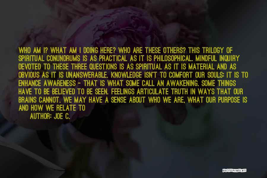 Spirituality And Religion Quotes By Joe C.