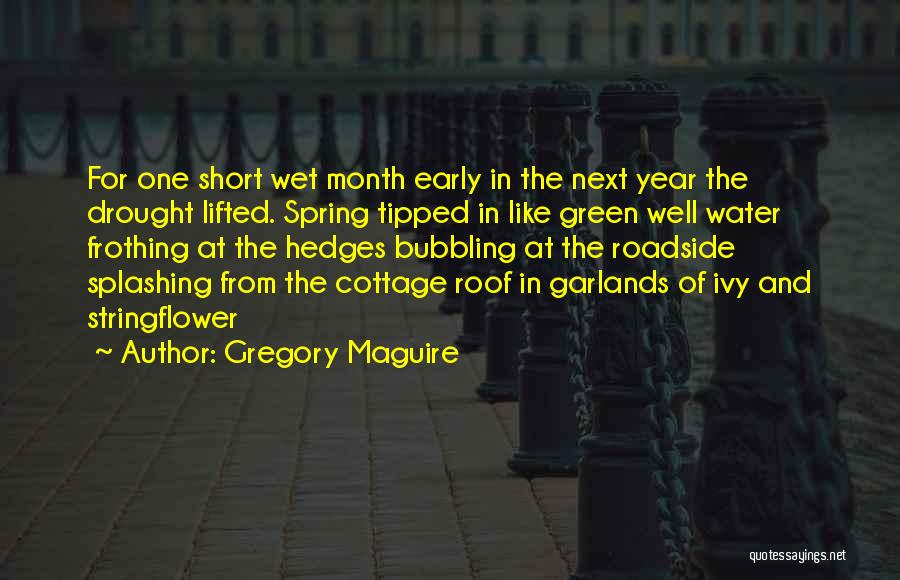 Splashing Water Quotes By Gregory Maguire