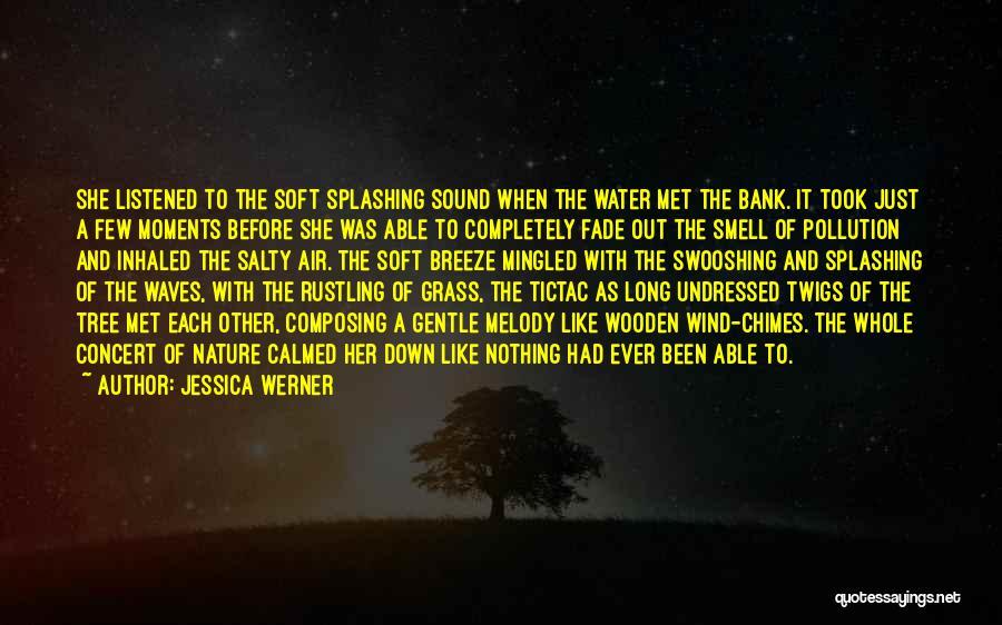 Splashing Water Quotes By Jessica Werner