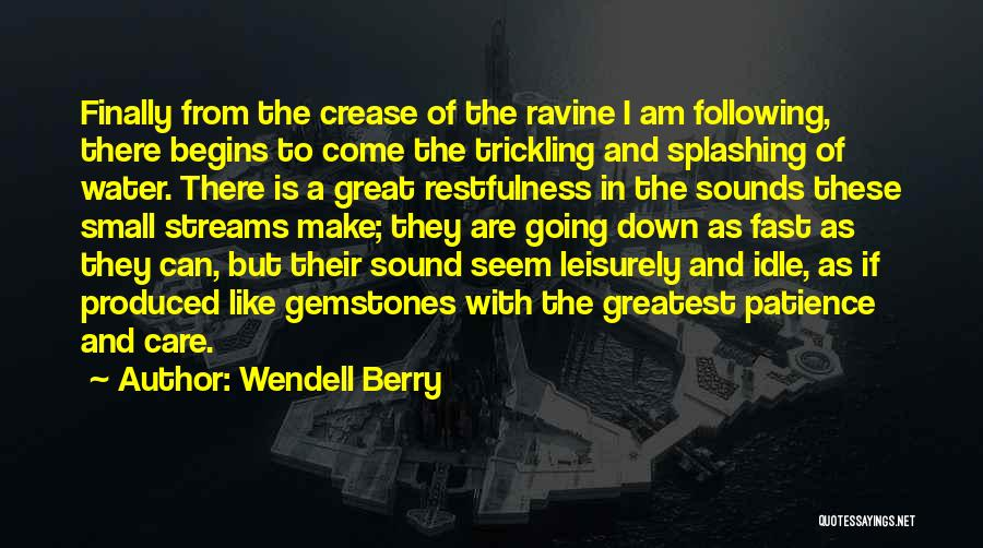 Splashing Water Quotes By Wendell Berry