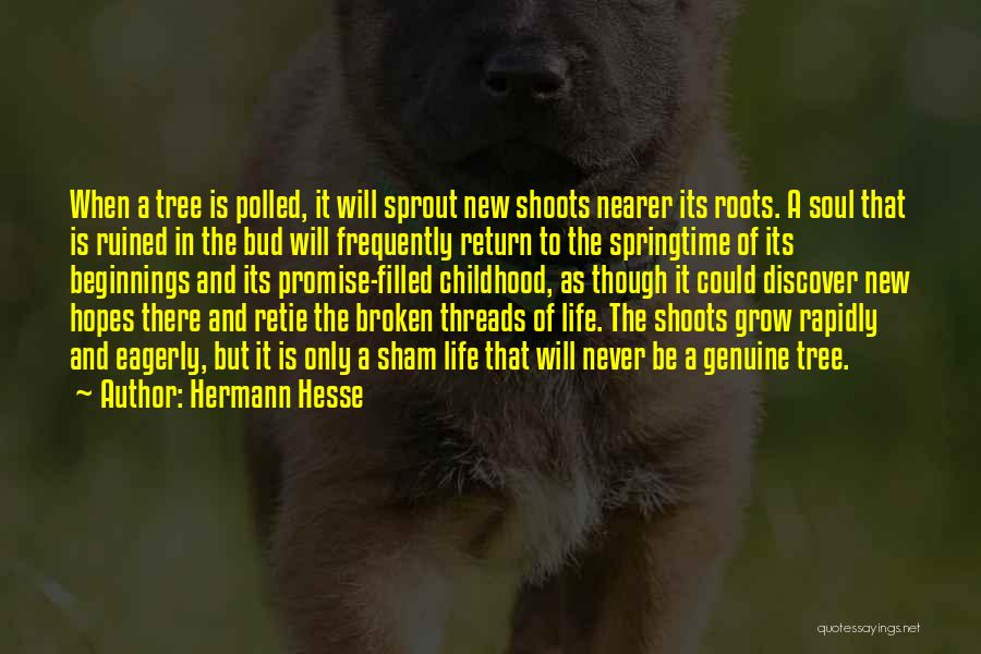 Springtime Quotes By Hermann Hesse