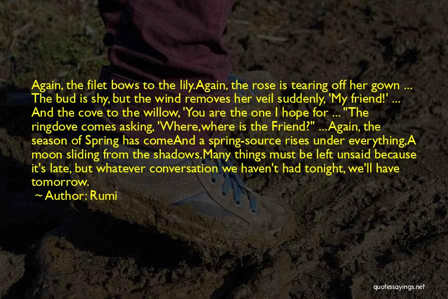 Springtime Quotes By Rumi