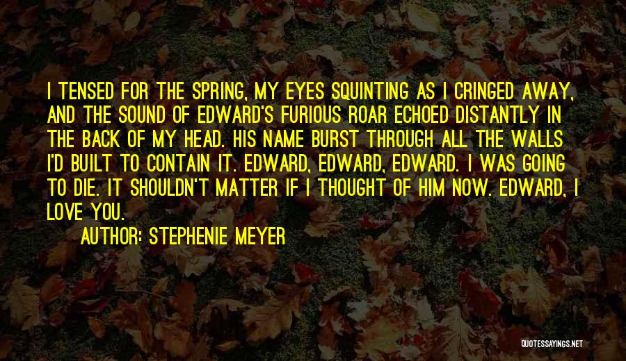 Squinting Quotes By Stephenie Meyer