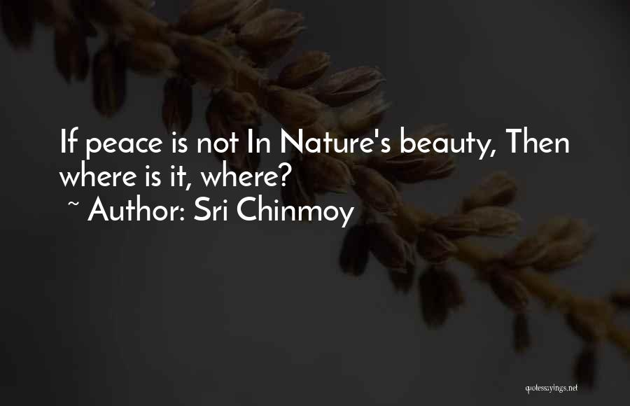 Sri Chinmoy Quotes 1621546