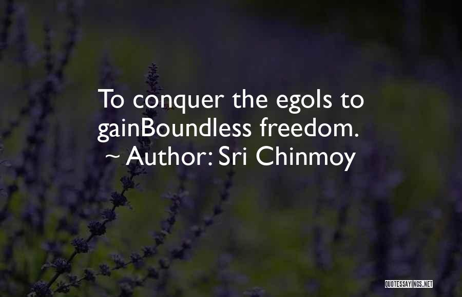 Sri Chinmoy Quotes 302502