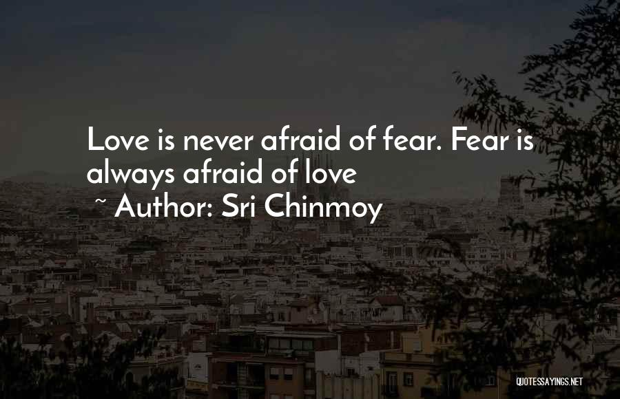 Sri Chinmoy Quotes 329516