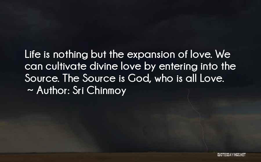 Sri Chinmoy Quotes 484344