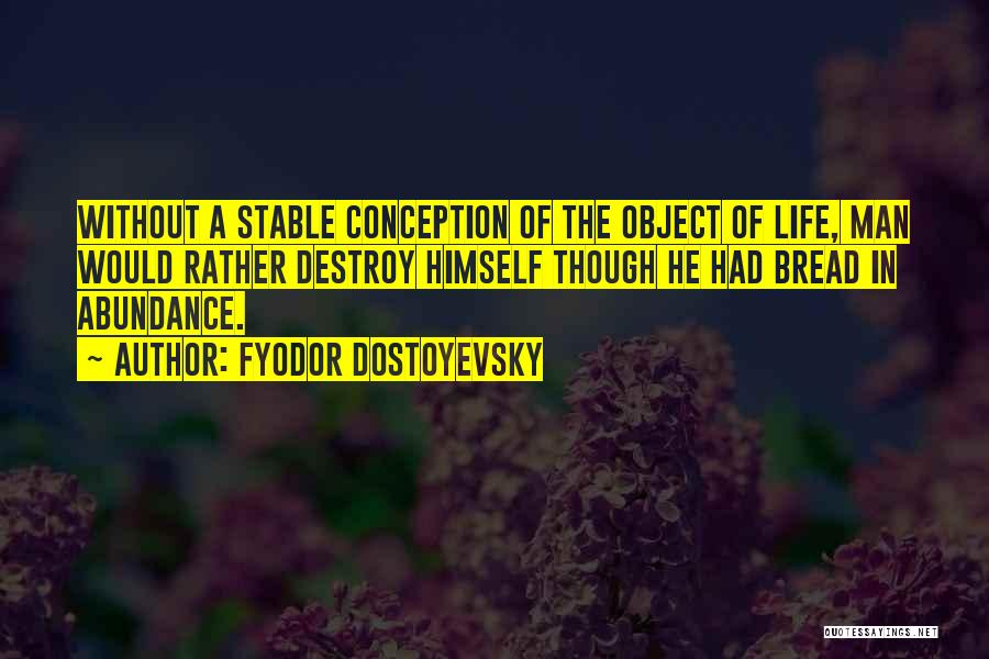 Stable Life Quotes By Fyodor Dostoyevsky