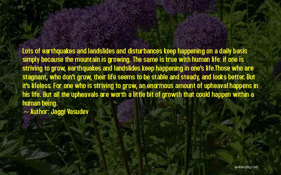 Stable Life Quotes By Jaggi Vasudev