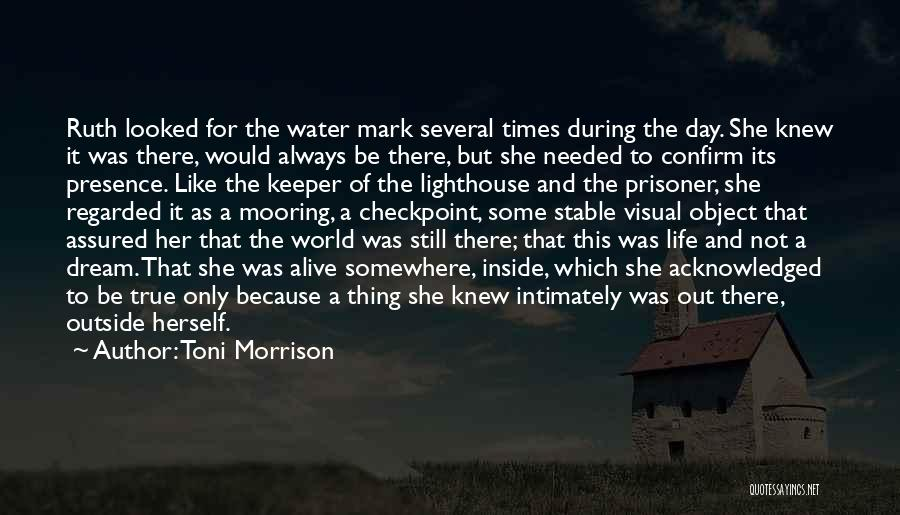 Stable Life Quotes By Toni Morrison
