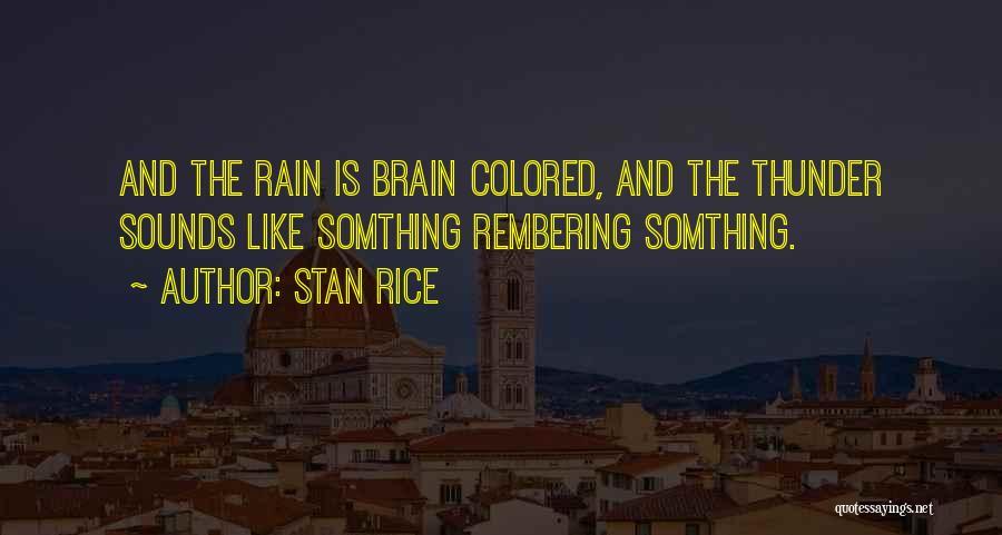 Stan Rice Quotes 1213815