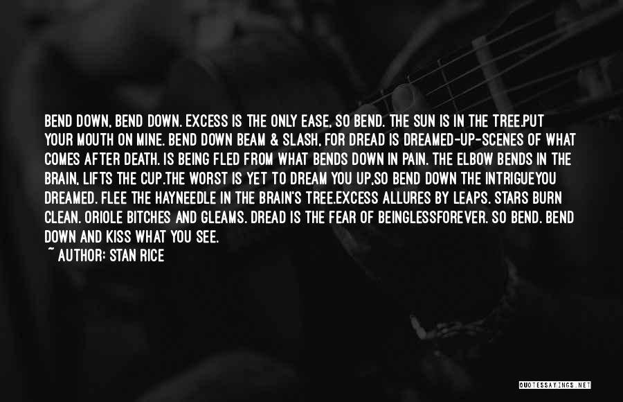 Stan Rice Quotes 1825188