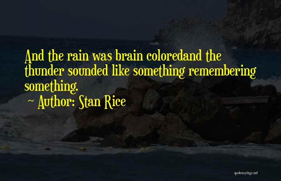 Stan Rice Quotes 2261961