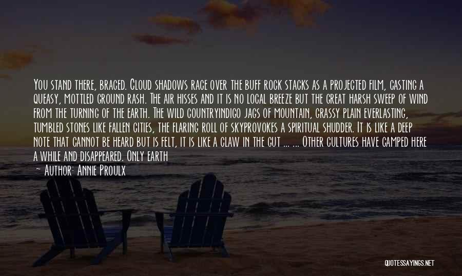Stand Like A Rock Quotes By Annie Proulx