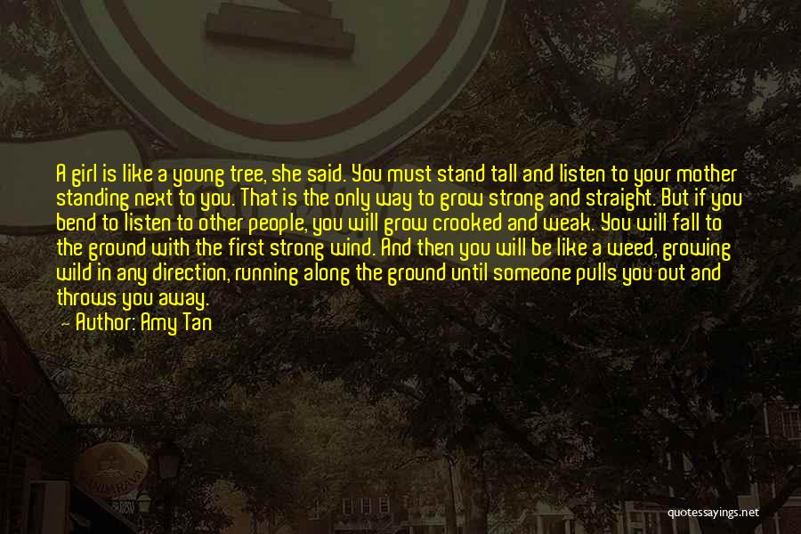 Stand Like A Tree Quotes By Amy Tan