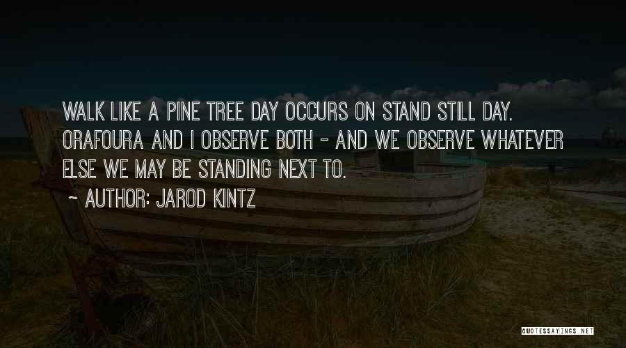 Stand Like A Tree Quotes By Jarod Kintz