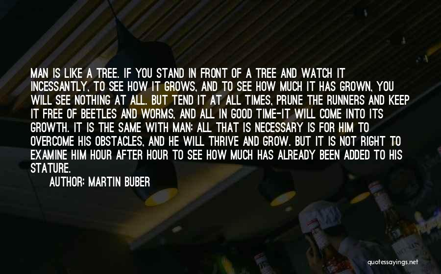 Stand Like A Tree Quotes By Martin Buber