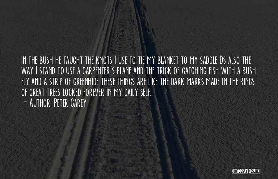 Stand Like A Tree Quotes By Peter Carey
