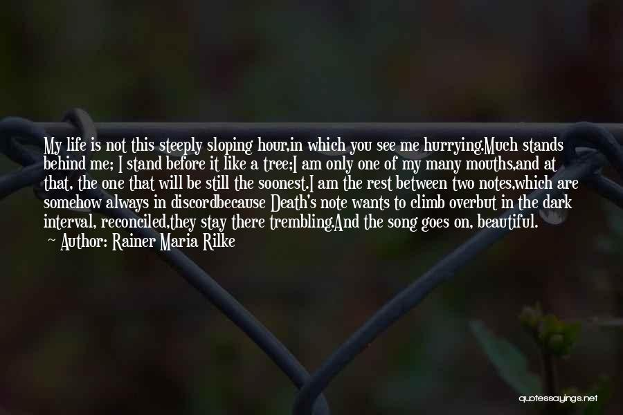 Stand Like A Tree Quotes By Rainer Maria Rilke