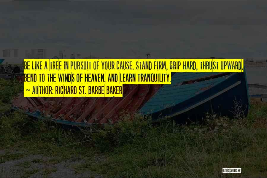 Stand Like A Tree Quotes By Richard St. Barbe Baker