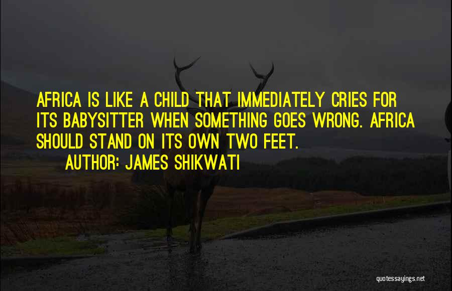 Stand On My Own Feet Quotes By James Shikwati