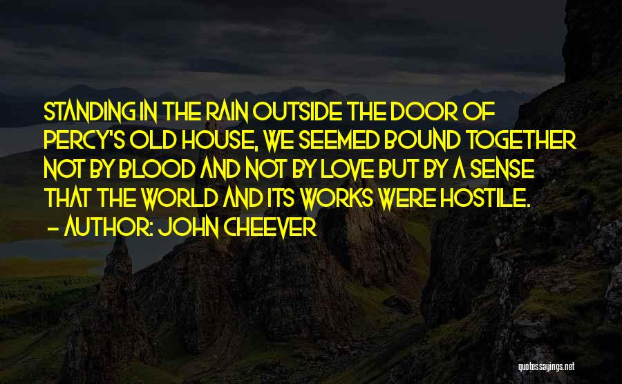 Standing In The Rain Quotes By John Cheever