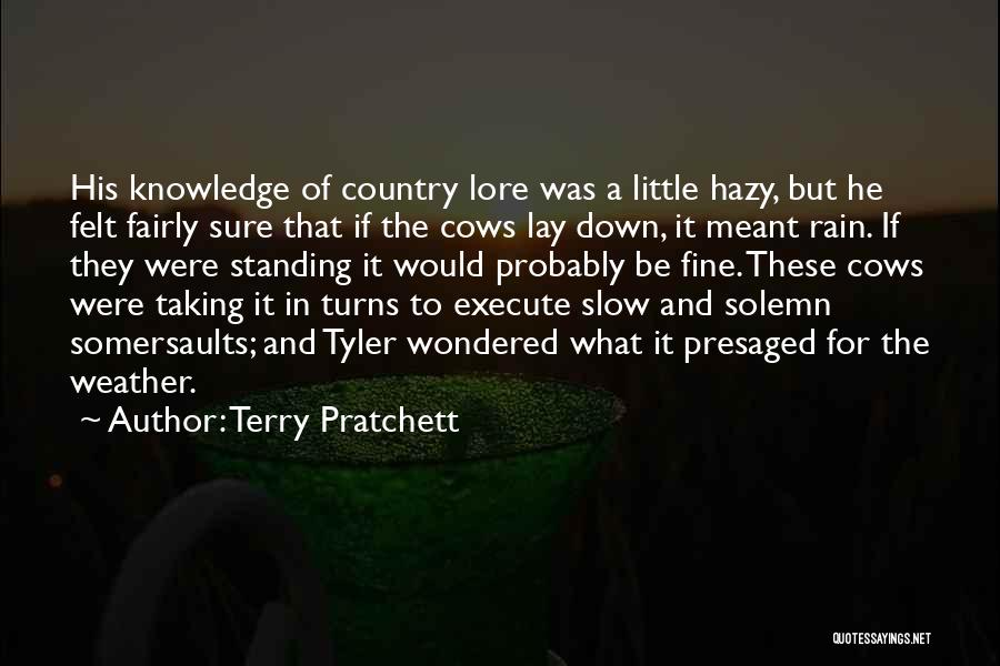 Standing In The Rain Quotes By Terry Pratchett