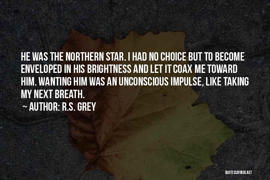 Star And Love Quotes By R.S. Grey