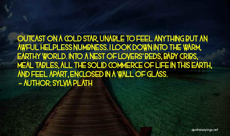 Star In Quotes By Sylvia Plath