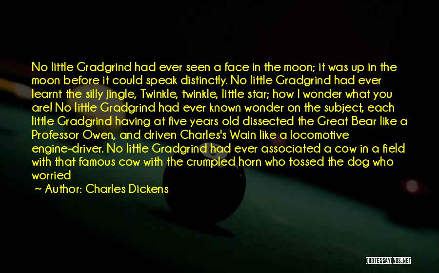 Star Twinkle Quotes By Charles Dickens