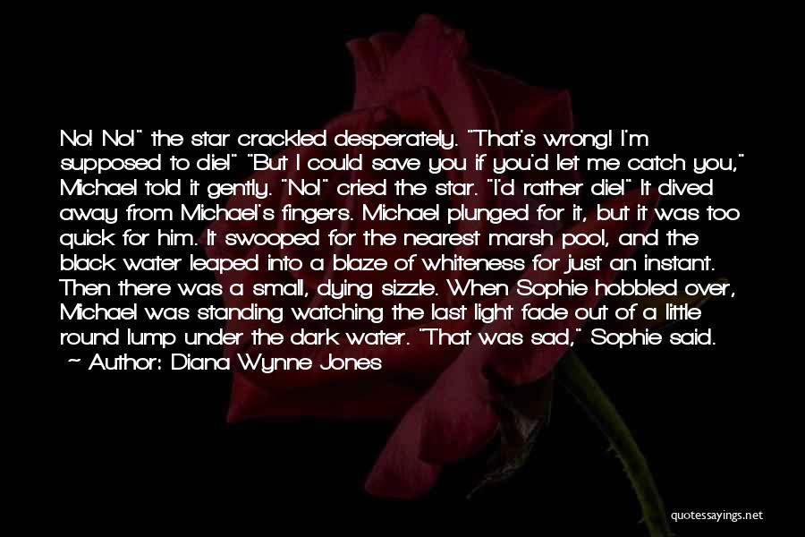 Star Watching Quotes By Diana Wynne Jones