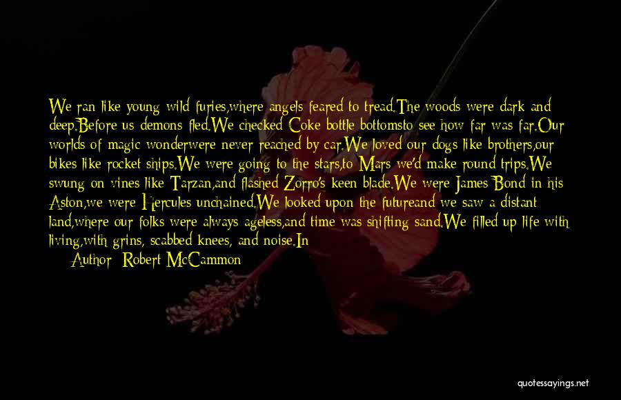 Stars And Angels Quotes By Robert McCammon