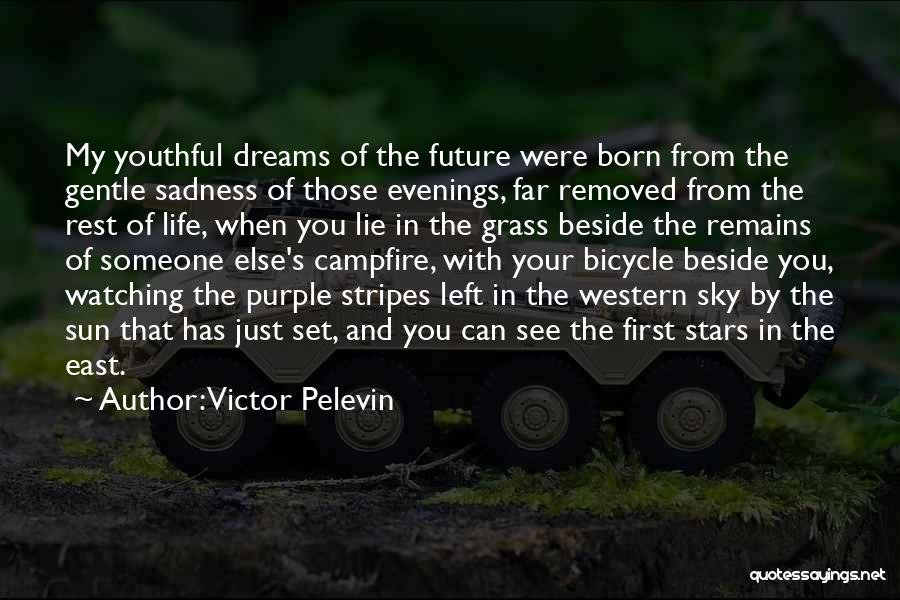 Stars And Stripes Quotes By Victor Pelevin