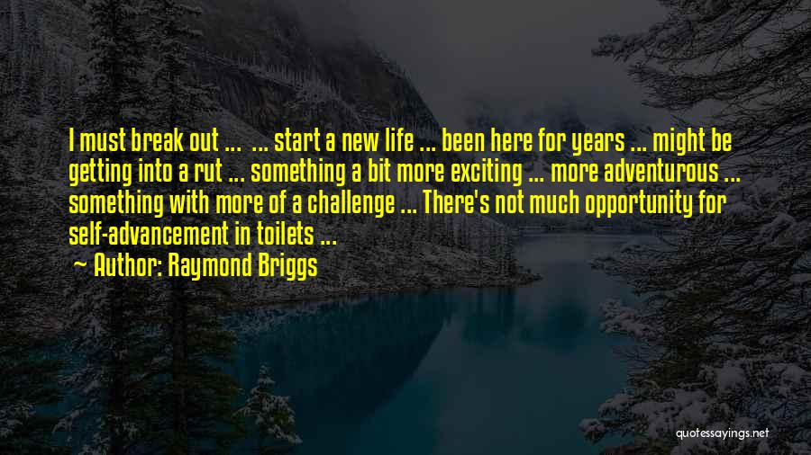 Start Of Something New Quotes By Raymond Briggs