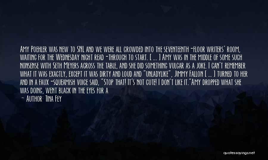 Start Of Something New Quotes By Tina Fey