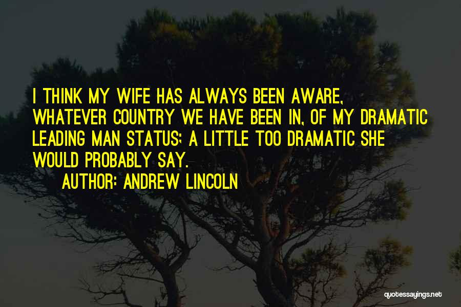 Status Quotes By Andrew Lincoln