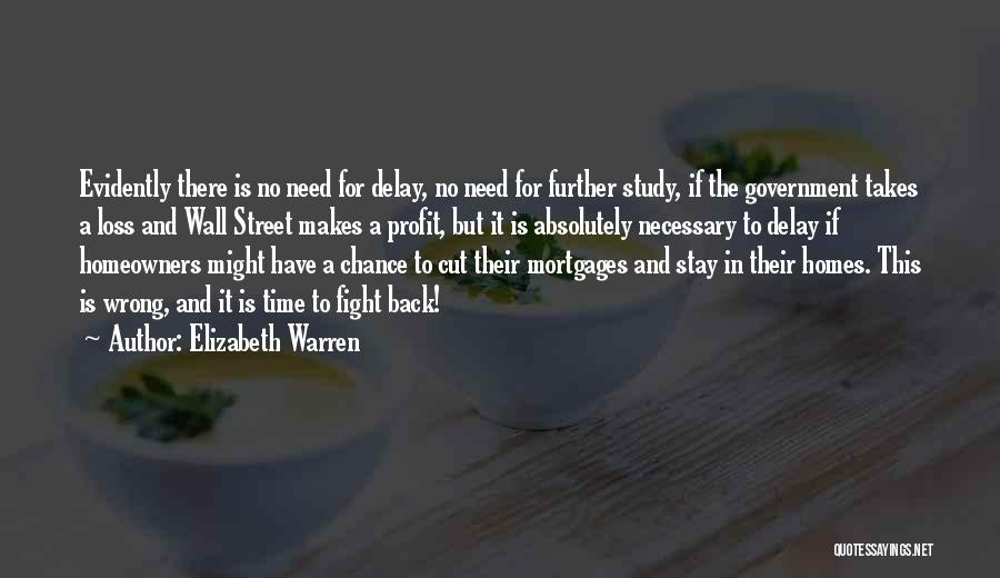 Stay And Fight Quotes By Elizabeth Warren