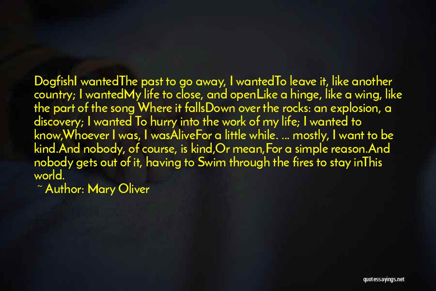 Stay Out My Life Quotes By Mary Oliver