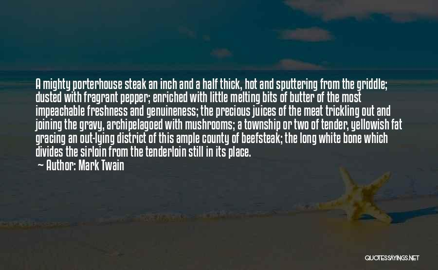Steak Out Quotes By Mark Twain