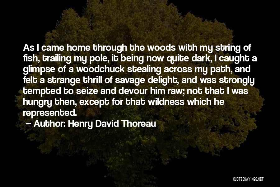 Stealing Home Quotes By Henry David Thoreau
