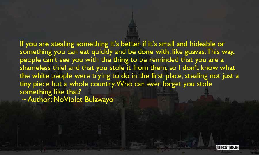 Stealing Something Quotes By NoViolet Bulawayo