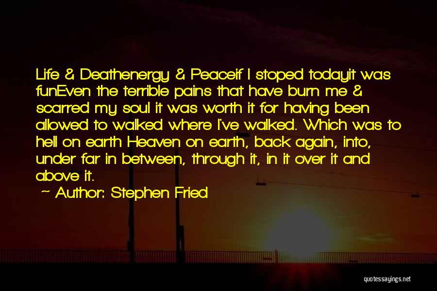 Stephen Fried Quotes 1061403