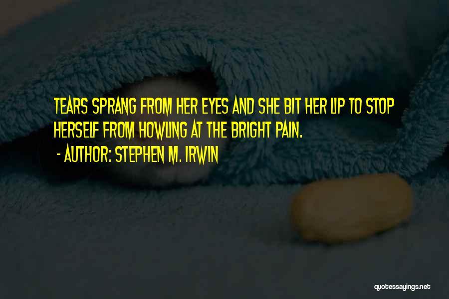 Stephen M. Irwin Quotes 2156619