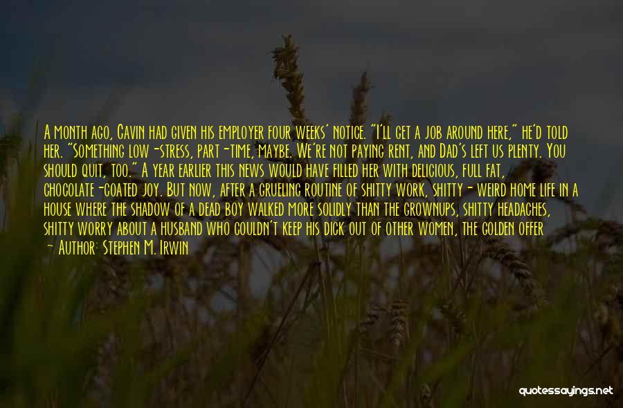 Stephen M. Irwin Quotes 79855