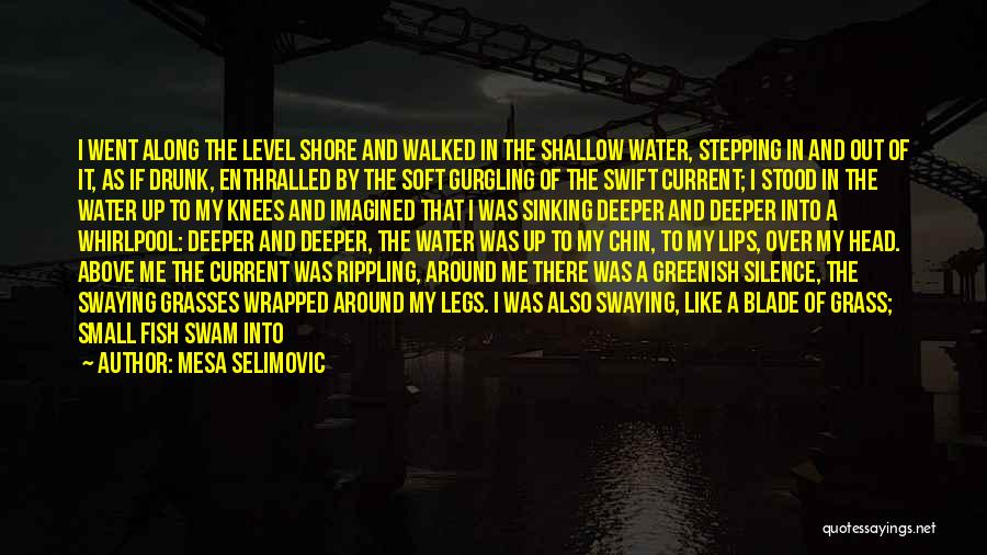 Stepping On Your Toes Quotes By Mesa Selimovic